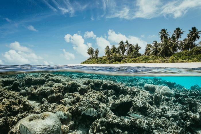 Robinson Maldives Meer