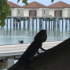 Robinson Maldives Blick